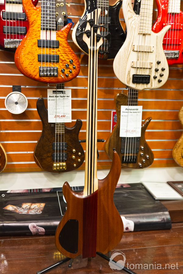 Wyn Guitars